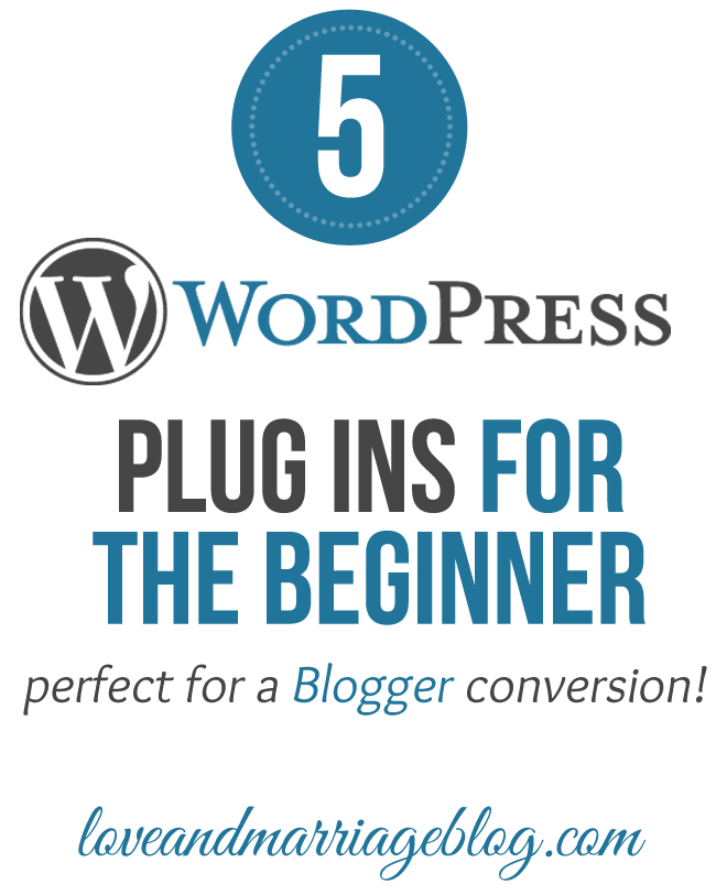 5 WordPress Plugins for The Newbie