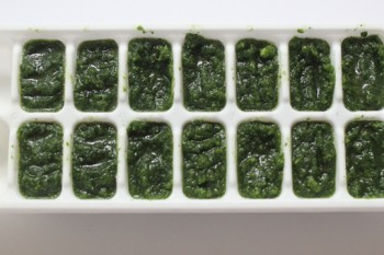 Green Veggie Cubes for Smoothies