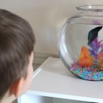 5 Reasons To Get Your Kids A Fish